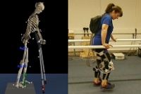 Biomechanics of the human motion